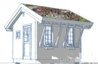 Diy Green Roof Shed Plans Living Roofs Inc