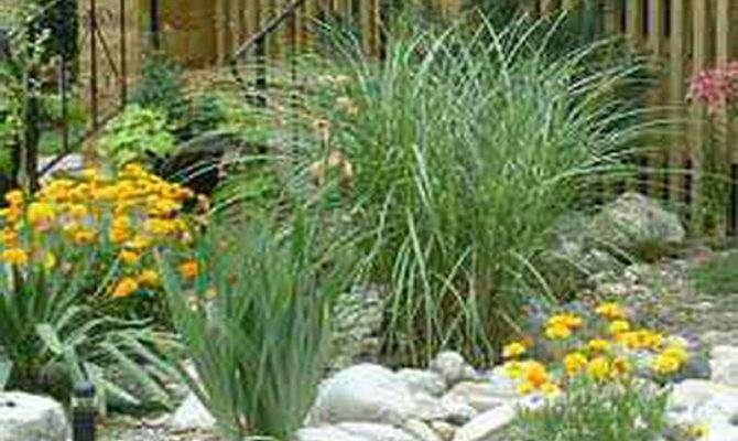 Flowers Rock Garden Designs Ideas