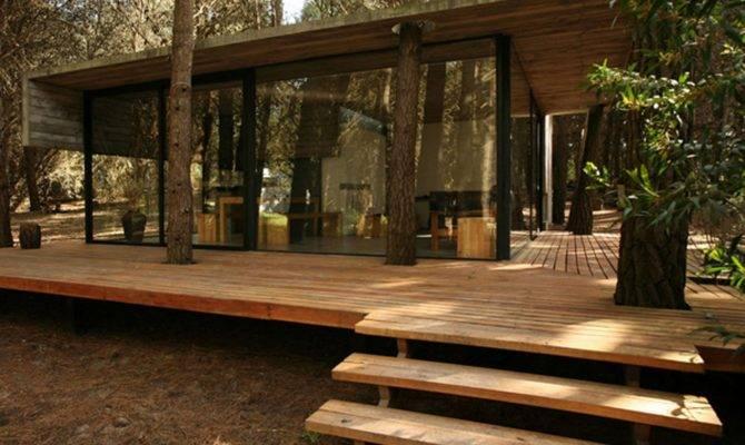 Impression Modern Cabin Plans Unique