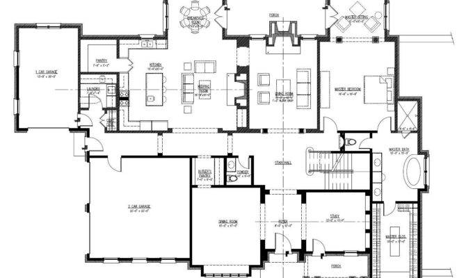 Large One Story House Plans Car