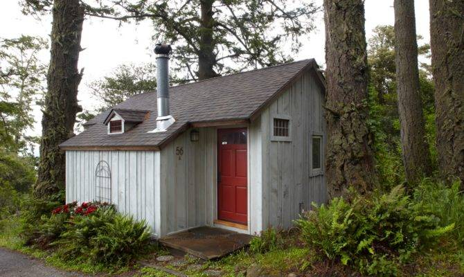 Lloyd Blog Tiny Home Built One Windfall Tree