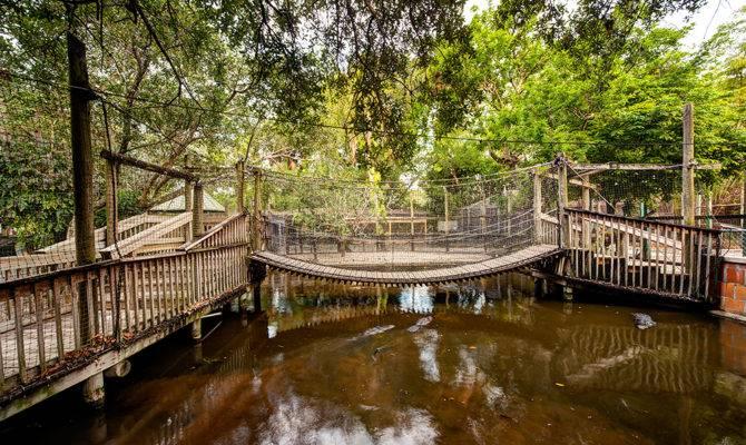 Old Florida Everglades Wonder Gardens Version Roadside Classic