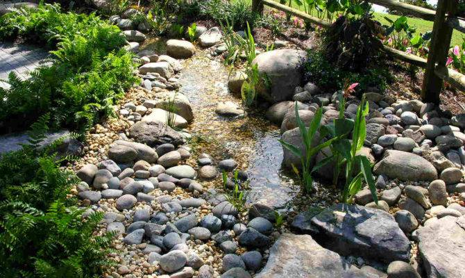 Rain Garden Design Examples Native