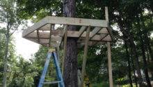Tree House Construction Building Brothers