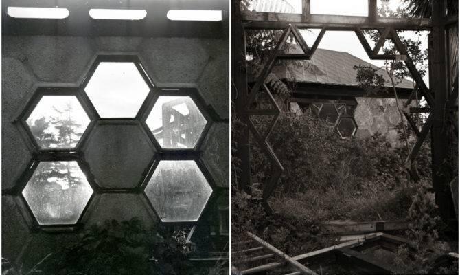 Beekeeper Built Dream Hexagonal House Without Hateful