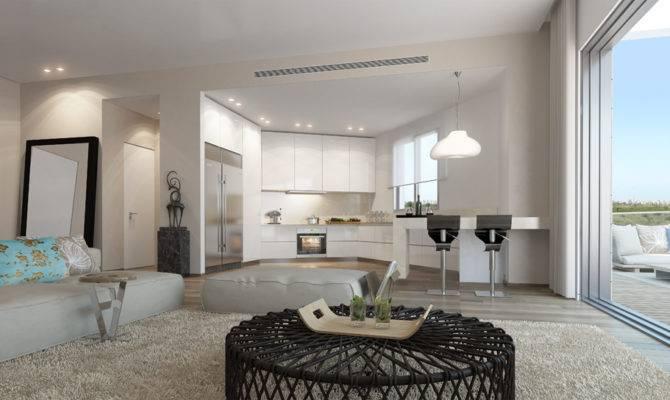 Black White Decor Open Plan Apartment Furry Rug Olpos Design