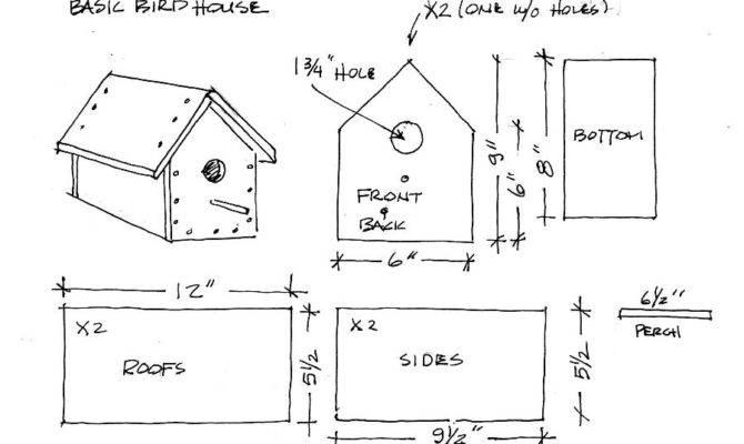 Boy Almanac Bird House Plans