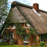 Brick Cottage Has Rose Vines Like Plus Bricks But
