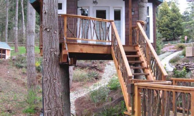 Build Treehouse Backyard
