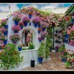 Colorful Courtyardcourtyards Gardens Container Spring Decor