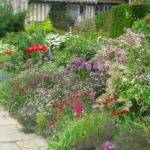 Colour Your Garden Bay Landscape