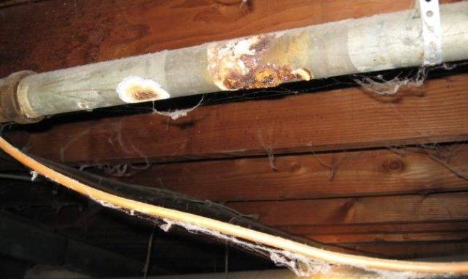 Crawlspace Plumbing Problems Checkthishouse