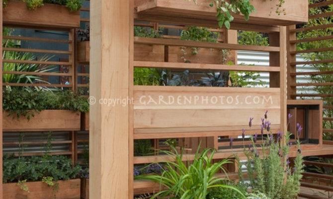 Creating Backyard Oasis
