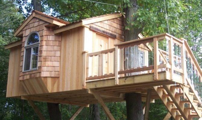 Custom Tree House Design Plans