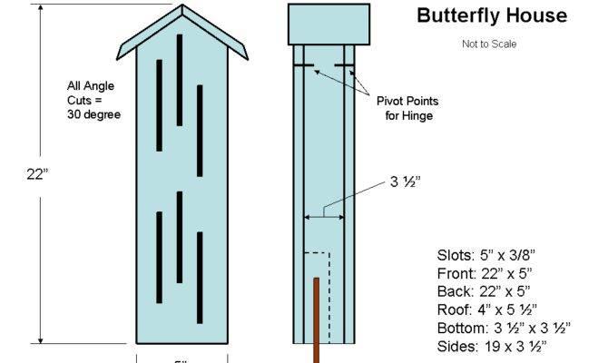 Diy Butterfly House Building Plans School Garden Courtyard