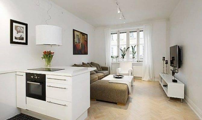 Efficient Apartment Small One Room Design