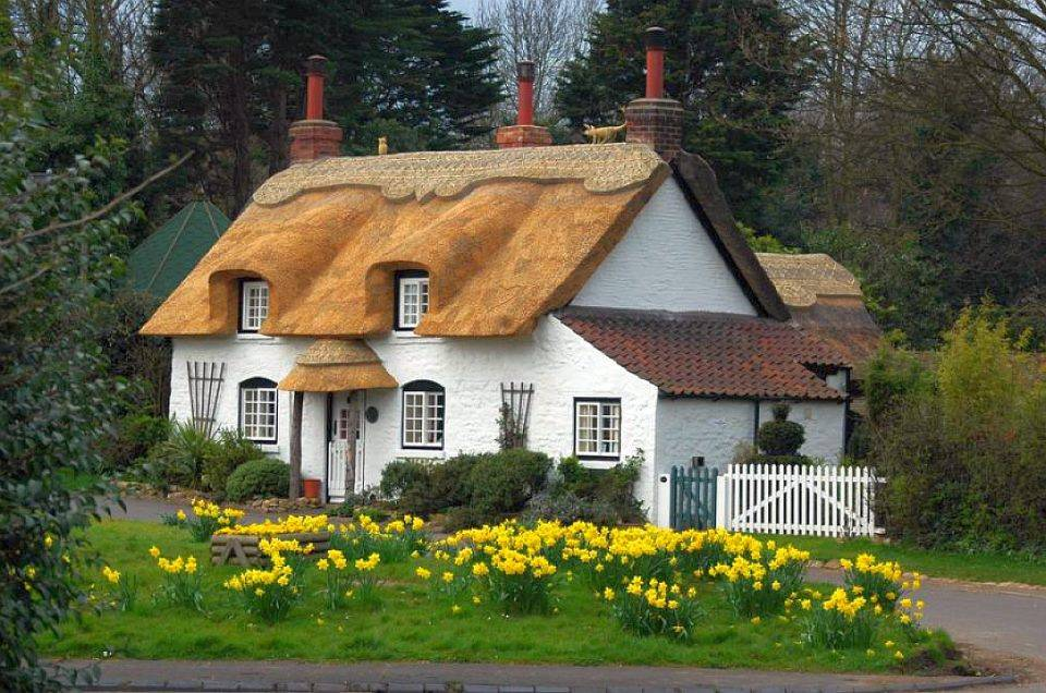 English Country Cottage Architecture Design Pinterest Home Plans Blueprints 28069