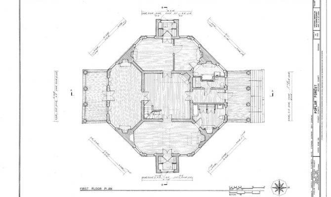 Forest Unique Octagon Brick Country House Plan Thomas Jefferson