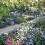 Gardens Cottage Michael Bates English Country Garden