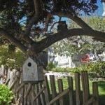 Hansel Gretel Cottage House Plans Historic Name Doll