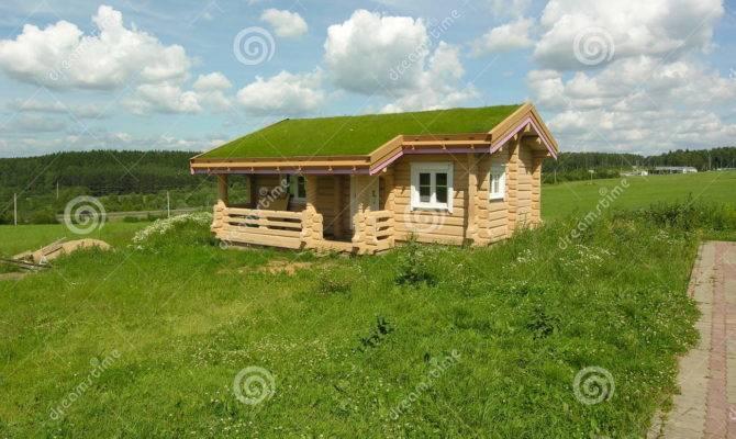 House Green Roof Blue Grass