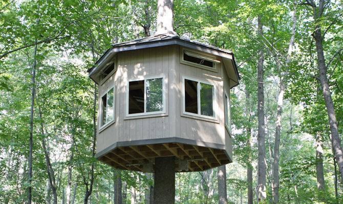 Impressive Tree House Building Plans Build