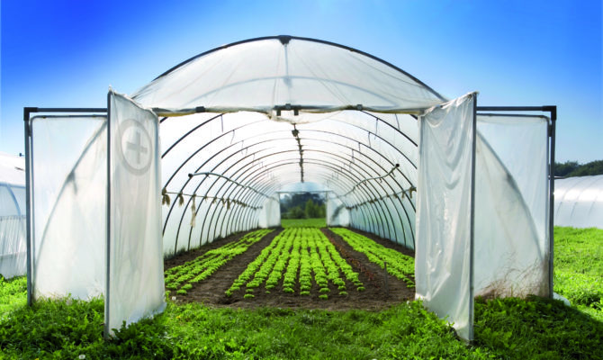 Innovative Examples Greenhouse Plans Inspire