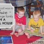 Large Small House Ways Thrive Smallish