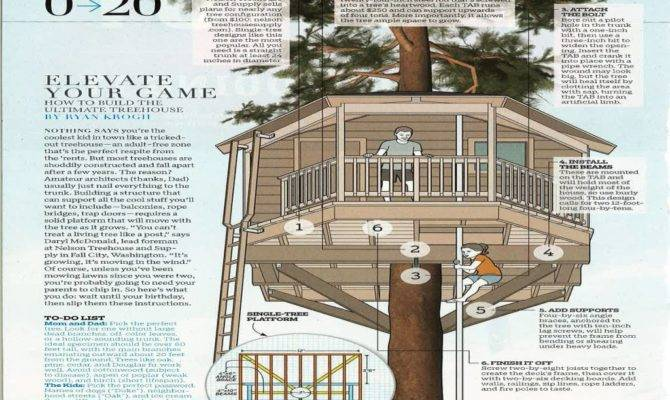 Lovely Graphics Treehouse Plans Designs Best