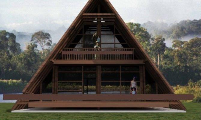 Modern Frame House Style Plan
