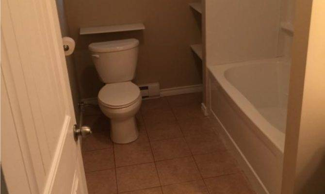 One Bedroom Basement Apartment Available Paradise