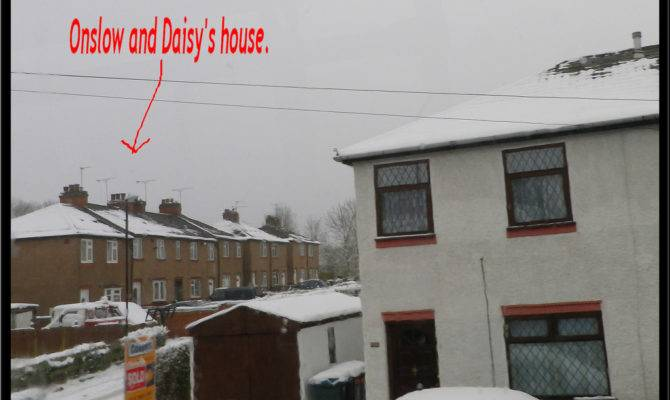 Onslow Daisy House Keeping Appearances Flickr