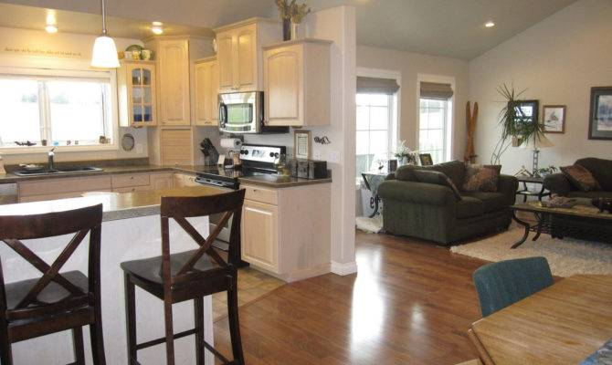 Open Plan Kitchen Living Room Designs Peenmedia