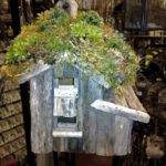 Plans Besides Green Roof Birdhouse Diy