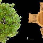 Plants Plan Photoshop Top Landscape Plans