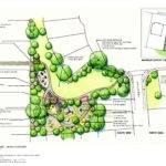 Shrub Plan Parkhurst Park Concept