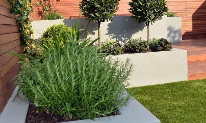 Simple Backyard Landscape Ranch House Design Stepping