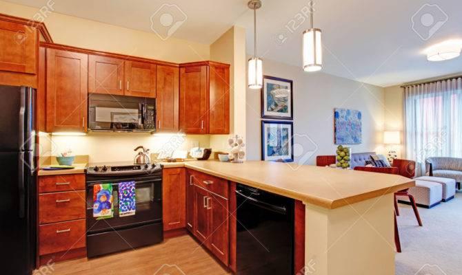 Small Kitchen Living Room Open Floor Plans
