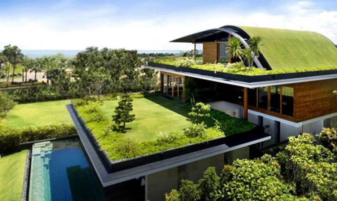 Ten Insights Designing Eco Friendly Green Homes Home