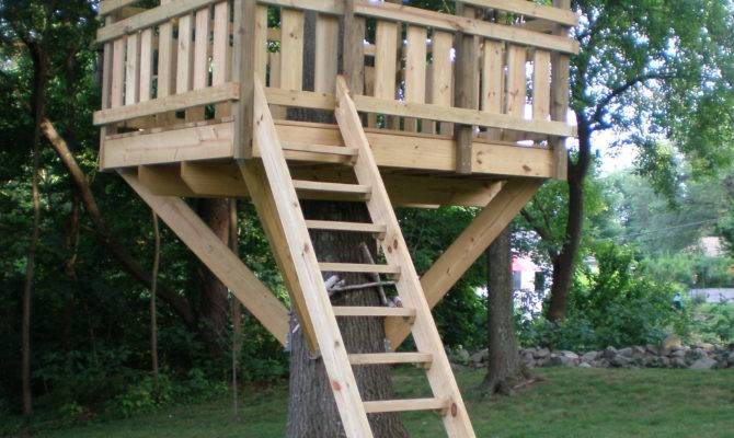Tree Fort Ladder Gate Roof Finale Village Custom