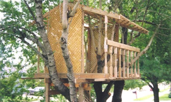 Tree House Plans Native Home Garden Design