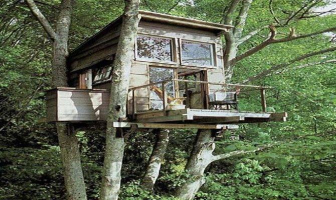 Tree House Schematics Get Wiring Diagram