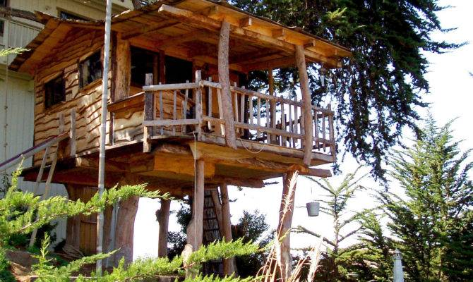 Tree House Wikimedia Commons