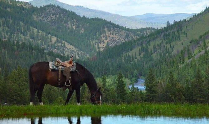 Triple Creek Ranch Romantic Montana Getaway All Roads