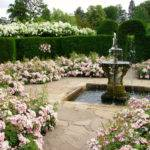 Victorian Garden Design Ludwigs Rosesludwigs Roses