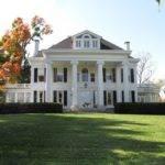 White House Wednesday Potted Boxwood